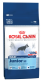Royal Canin Maxi Junior Dog Food 15kg Special Offer £48 or 2 for £90